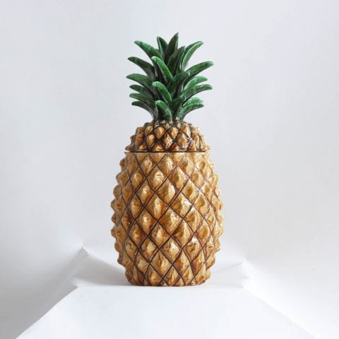 Giant Pineapple Box